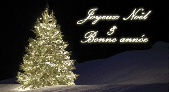 Photos De Joyeux Noel 2019.Joyeux Noel Et Bonne Annee 2019